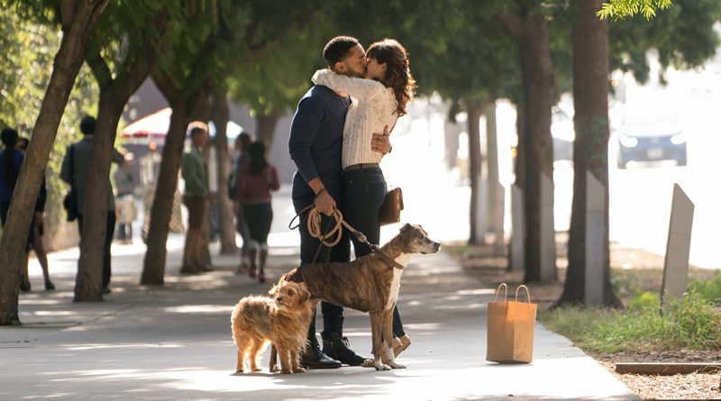 DOG DAYS – FAMILY PACK GIVEAWAY